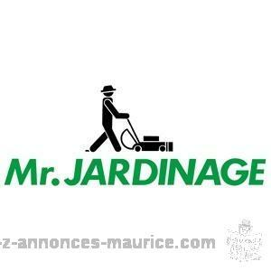 Service lavage ,nettoyage , jardinage