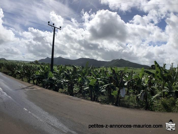Terrain Agricole - 1 arpent - Clemencia ( Route Royale)