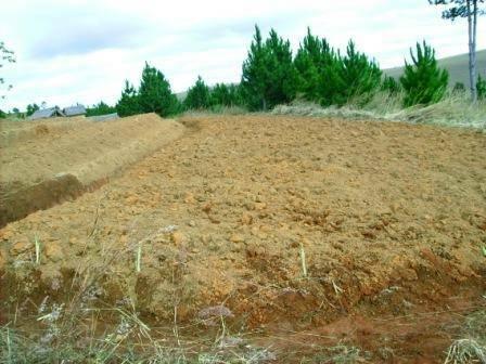 Terrain agricole proche Antananarivo