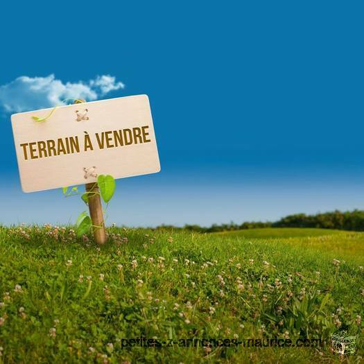 Terrain commercial